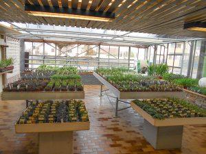 Die Innenräume für die Kräuterpflanzen